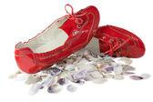 Kırmızı bayan bale düz ayakkabılar ve kabukları üzerinde beyaz izole — Stok fotoğraf