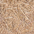 Close up straw texture — Stock Photo