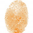 Orange fingerprint vector — Stock Vector #6185785