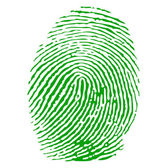 Green fingerprint vector — Stock Vector