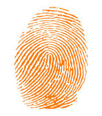 Orange fingerprint vector — Stock Vector