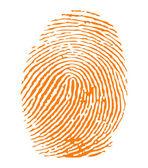 Orange fingerprint vector — Stock Vector