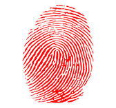 Red fingerprint vector — Stock Vector