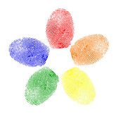 Vector of colored fingerprints — Stock Vector