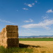 Haystack — Stock Photo #6723058