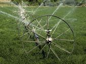 Agricultural irrigarion — Stock Photo