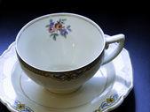 Tea cup — Stock fotografie