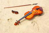скрипка и солнцезащитные очки — Стоковое фото