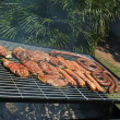 Stock Photo: South AfricBraai