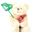 Teddy bear with fishing net — Stock Photo