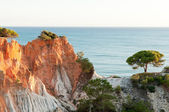 Pine Cliffs of Algarve — Stock Photo