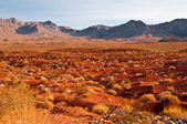 Panoramic view of Valley of Fire — Stock Photo