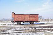Auschwitz vagon — Stok fotoğraf
