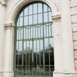 Old green door in Vienna — Stock Photo
