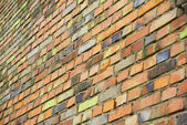 Colorful brickwall #2 — Stock Photo