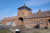 Auschwitz — Photo