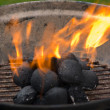 Barbecue grill — Stock Photo #6233596