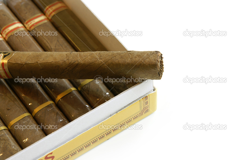 Cigars in a humidor isolated on white background — Stock Photo #6230709