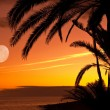 Sunset - Stockfoto