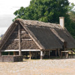 Stock Photo: Viking house