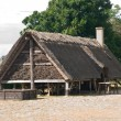 Viking house — Stock Photo