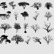 Stock Photo: Tree selection