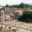 Forum romanum — Stock Photo #6385808