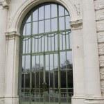 Old green door in Vienna — Stock Photo #6556039