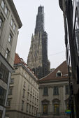 Reperation work on the St stephens cathedral — Stock Photo