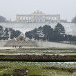 Stock Photo: Castle Schonbrunn in ViennAustria