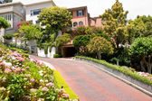 Lombard street in SF — Stock Photo