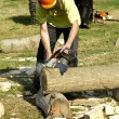 Stock Photo: Woodcutter
