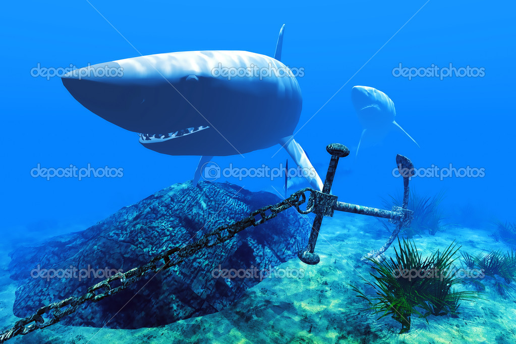 Two sharks in the Caribbean waters — Stock Photo #6363370