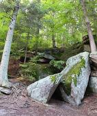 Karkonowski National Park, Poland — Stock Photo