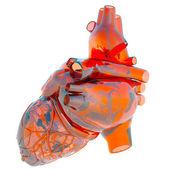 Modelo del corazón humano — Foto de Stock