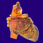 Model of human heart - made of glass — Stock Photo
