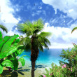 Royalty-Free Stock Photo: Hawaiian Paradise