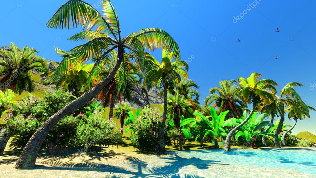 Hawaiian paradise — Stock Photo #6740408