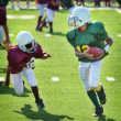 Stock Photo: Youth football