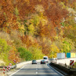 Autumn color highway — Stock Photo #6617981