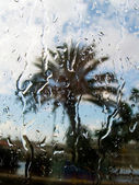 Rain behind a window — Stock Photo