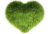 3d grass heart isolated on white — Stock Photo