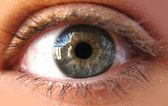 Blue iris eye in a macro picture. Closeup — Stock Photo