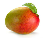 Mango with leaves — Stock Photo