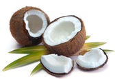 Coconut with leaves — Stock Photo