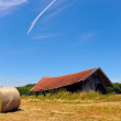 Farmers field with hay bales - Stock Photo
