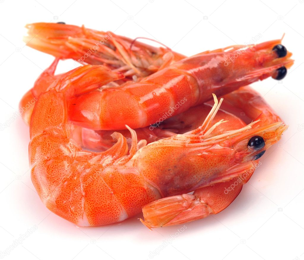 Fresh shrimp — Stock Photo © nikitos1977 #6279104