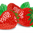 Strawberry isolated on white — Stock Vector #6298493