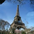 Calm sunny eiffel tower view - France — Stock Photo
