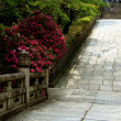 Japanse Garden Pathway - Stock Photo